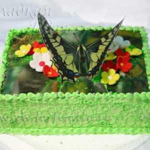 Торт сливочный Бабочка