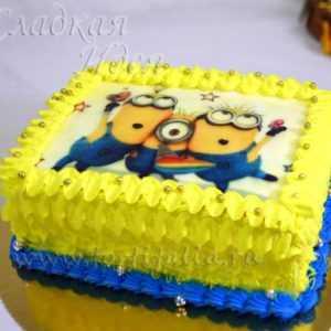 Торт детский 00432