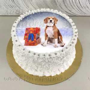 Новогодний торт Собака