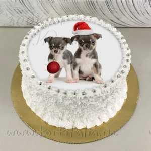 Торт новогодний Собачки