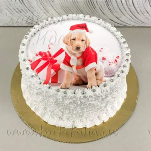 Торт новогодний Собака-2018