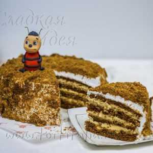Торт детский Медовик